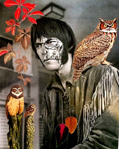(CreativeWork)     Neil Young with Spirit Bird:Old World Owl & Botanicals:  Maple Leaf                   by Kelly Sullivan. mixed-media. Shop online at Bluethumb.