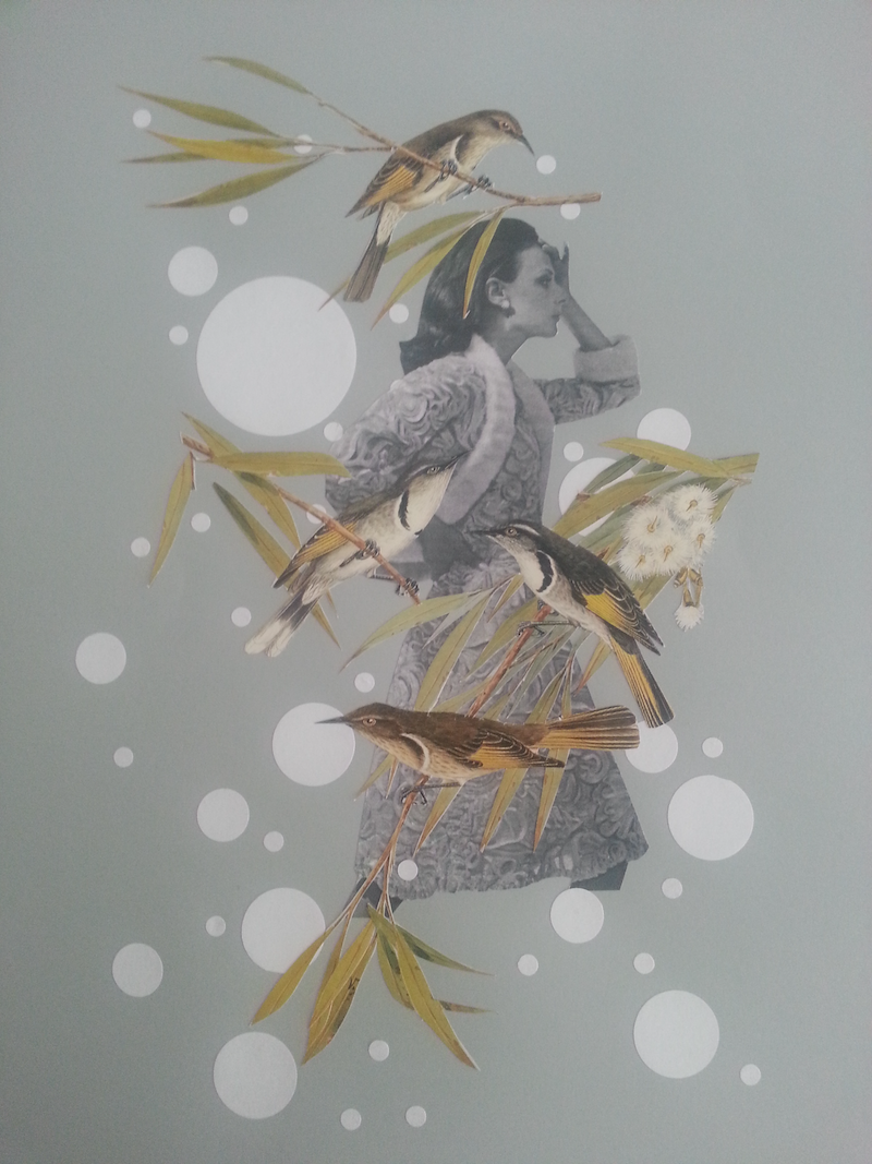 """(CreativeWork) SALE """"What bird is that' -#6 by Karen Coull. mixed-media. Shop online at Bluethumb."""