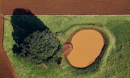 (CreativeWork) Water hole by Stuart Chape. photograph. Shop online at Bluethumb.