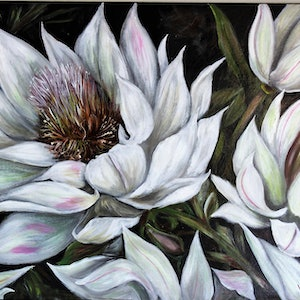(CreativeWork) Bridal Flower by Kathryn deBoer Ipsen. arcylic-painting. Shop online at Bluethumb.