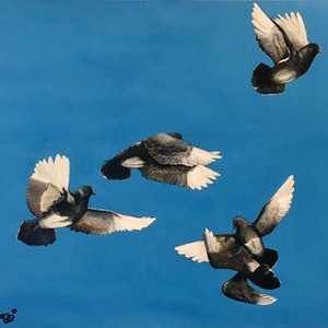 (CreativeWork) Flying high by Michelle Avery. arcylic-painting. Shop online at Bluethumb.