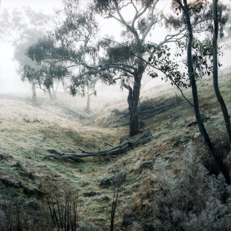 (CreativeWork) Sofala 1871 #2 (from the series Into the Unknown)  by Kurt Sorensen. photograph. Shop online at Bluethumb.