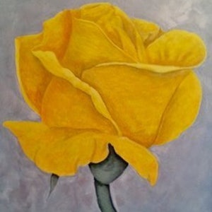 (CreativeWork) Yellow Rose by Julie-Anne Gatehouse. arcylic-painting. Shop online at Bluethumb.