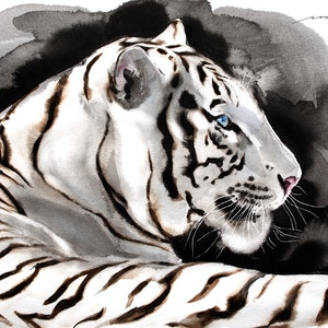 (CreativeWork) White Tiger4 by Soo Beng Lim. drawing. Shop online at Bluethumb.