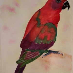 (CreativeWork) Parrot by Svetlana Cook. watercolour. Shop online at Bluethumb.