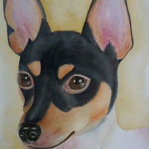 (CreativeWork) Toy Fox Terrier by Svetlana Cook. watercolour. Shop online at Bluethumb.
