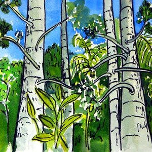(CreativeWork) Forest Magic. by valarie ross. watercolour. Shop online at Bluethumb.