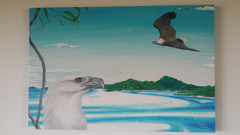 (CreativeWork) White chested sea eagles over Whitehaven beach... by nui hamon. acrylic-painting. Shop online at Bluethumb.