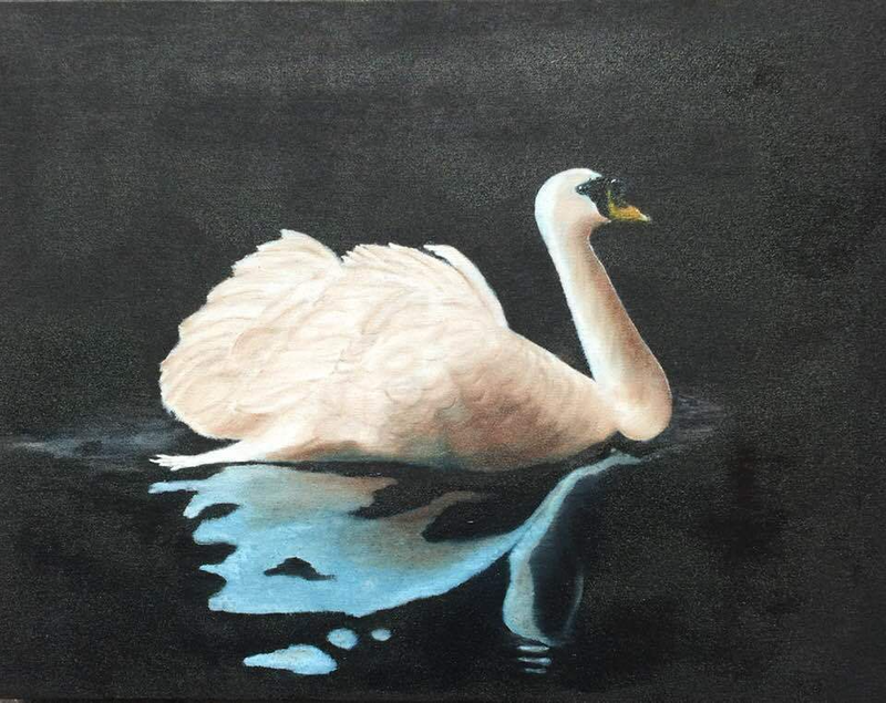 "(CreativeWork) Swan in Lake by Bruce ""Notty"" Notman. oil-painting. Shop online at Bluethumb."