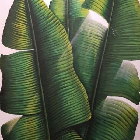 (CreativeWork) Larger than Life  by Tracey Knowland. Acrylic Paint. Shop online at Bluethumb.