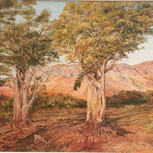 (CreativeWork) Flinders Ranges South Australia by Henry Wood. oil-painting. Shop online at Bluethumb.