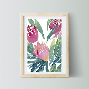 (CreativeWork) Winter Proteas No.1 — a2 large — Artist's Proof — Floral watercolour painting print — pink green Australian native flowers — bedroom, art, pretty, beautiful Inactive Ed. 1 of 1 by Lyndsey Knight. print. Shop online at Bluethumb.