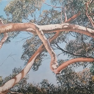 (CreativeWork) BRANCHING OUT  SERIES -THE CANOPY Ed. 8 of 10 by Margaret HADFIELD. print. Shop online at Bluethumb.