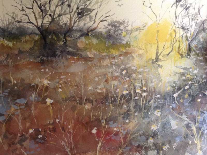 (CreativeWork) NT sunset by Bernd Rieve. watercolour. Shop online at Bluethumb.