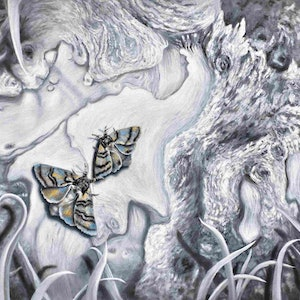 (CreativeWork) Gippsland Moths by Janette Hafez. oil-painting. Shop online at Bluethumb.