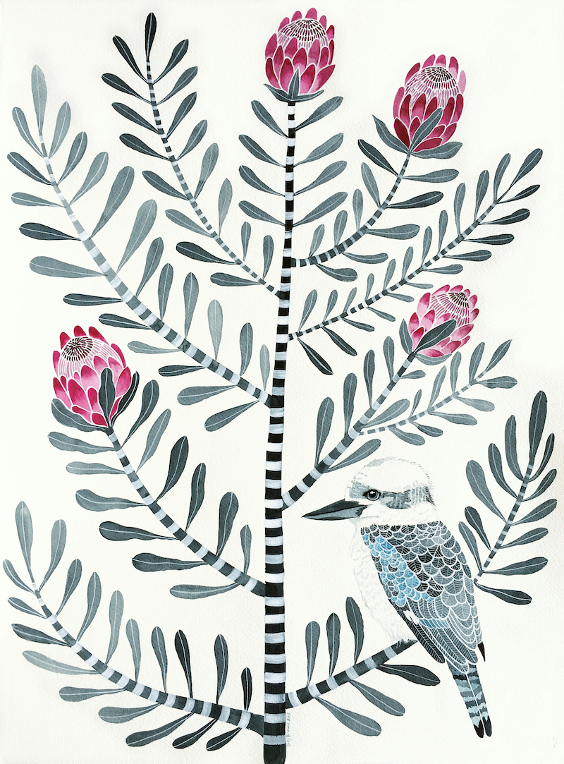 (CreativeWork) Kookaburra on Llewellyn Street Protea 2 by Sally Browne. watercolour. Shop online at Bluethumb.