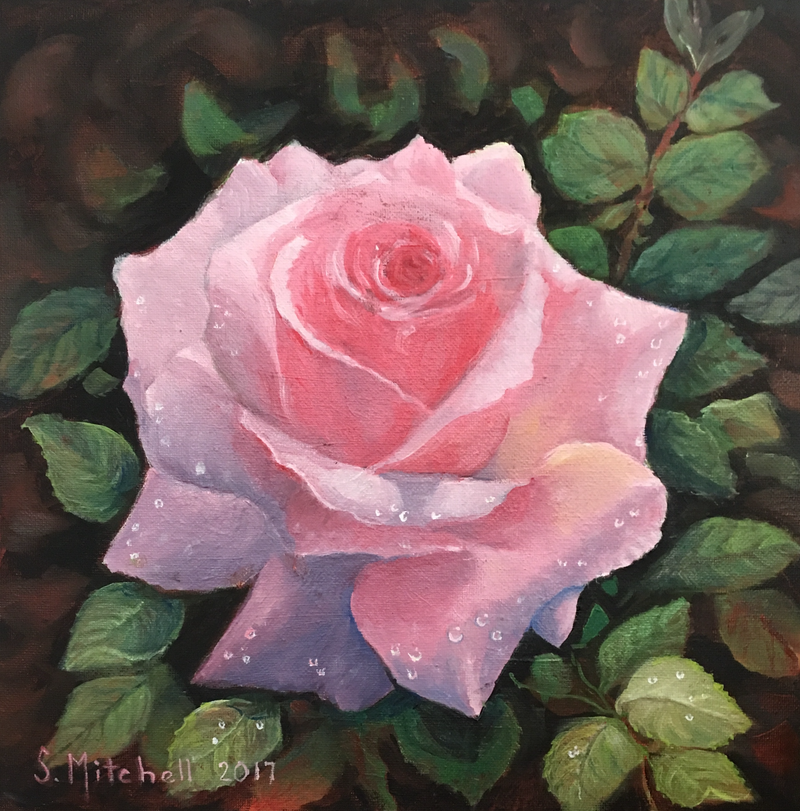 (CreativeWork) Raindrops on Pink Rose by Sally Mitchell. oil-painting. Shop online at Bluethumb.