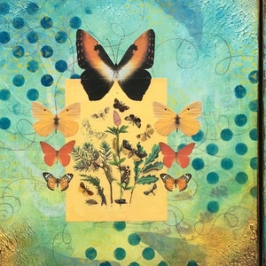 (CreativeWork) New Life set by Sharon Baker. mixed-media. Shop online at Bluethumb.