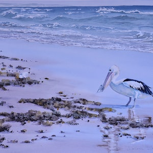 (CreativeWork) Pelican's Breakfast by Dellene Strong. watercolour. Shop online at Bluethumb.