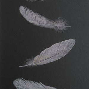 (CreativeWork) DRIFTING  by Linda Joyce. drawing. Shop online at Bluethumb.