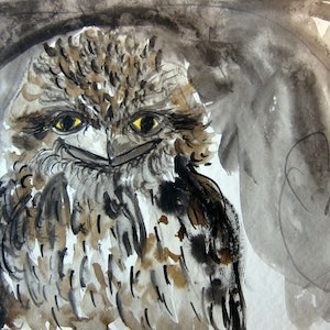 (CreativeWork) Frogmouth FRED by Rachel Carroll. mixed-media. Shop online at Bluethumb.