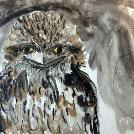 (CreativeWork) Frogmouth FRED by Rachel Carroll. Mixed Media. Shop online at Bluethumb.