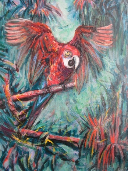 (CreativeWork) Sqawking Bird by kay steels. arcylic-painting. Shop online at Bluethumb.