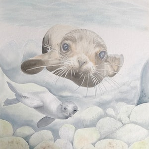 (CreativeWork) Inquisitive Sea Lions by Kathryn Price. watercolour. Shop online at Bluethumb.