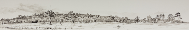 (CreativeWork) The Point - Framed Original Panoramic Drawing by Kylie Fogarty. drawing. Shop online at Bluethumb.