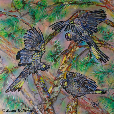 (CreativeWork) Yellow- tailed Black Cockatoos by Susan Willemse. acrylic-painting. Shop online at Bluethumb.