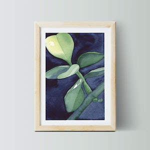 (CreativeWork) Indigo Succulent Study No.3 — a4 — edition 4/50 — houseplant, greenery, blue, green, small print, great gift, wall print, botanical Ed. 4 of 50 by Lyndsey Knight. print. Shop online at Bluethumb.