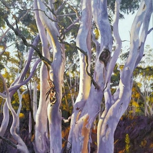 (CreativeWork) Last Rays by Hetty Thompson. oil-painting. Shop online at Bluethumb.