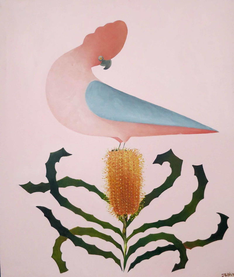 (CreativeWork) Galah in pink  by John Graham. oil-painting. Shop online at Bluethumb.