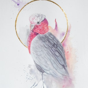(CreativeWork) Mini Australian Bird Series - Galah by Toni McCluskey. watercolour. Shop online at Bluethumb.