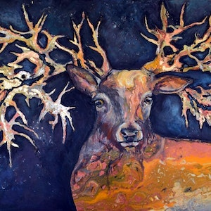 (CreativeWork) King Of The Woods by Patrycja Whipp. arcylic-painting. Shop online at Bluethumb.