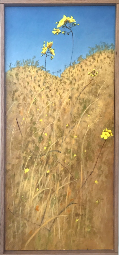 (CreativeWork) Kapok Colour Sketch by Mike Rule. oil-painting. Shop online at Bluethumb.