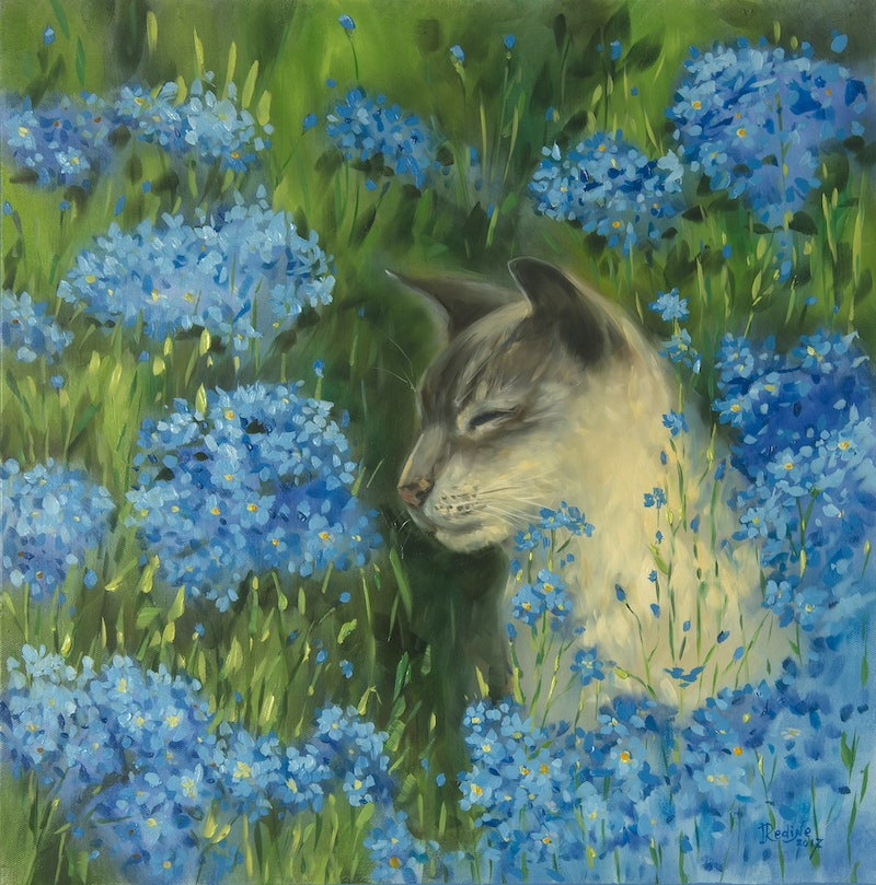 Forget Me Not Flowers And Cat By Irina Redine Paintings For Sale