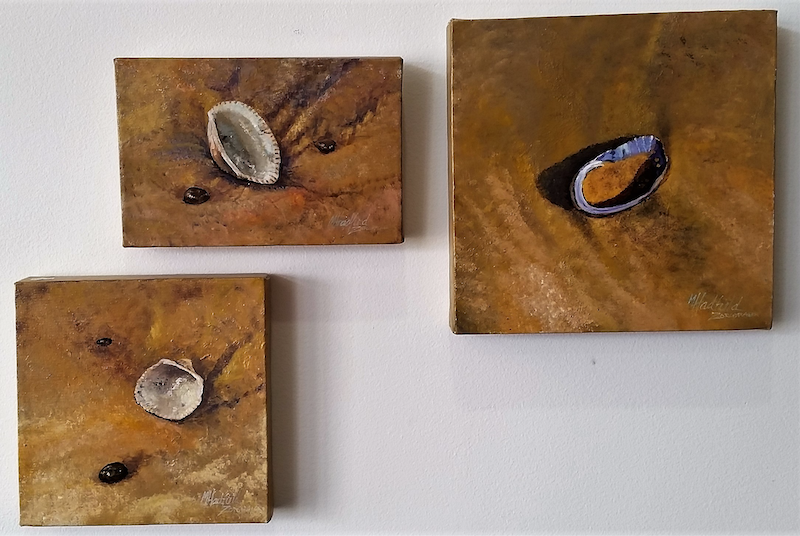 (CreativeWork) SHELL STUDIES-triptych set by Margaret HADFIELD. arcylic-painting. Shop online at Bluethumb.