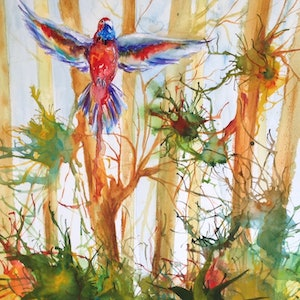 (CreativeWork) Apollo Bay: Flight Through the Forest by Michael Giddens. watercolour. Shop online at Bluethumb.