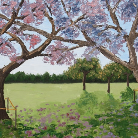 "(CreativeWork) Jacarandas ""Purple Rain"" by Chrissy Dwyer. Acrylic Paint. Shop online at Bluethumb."