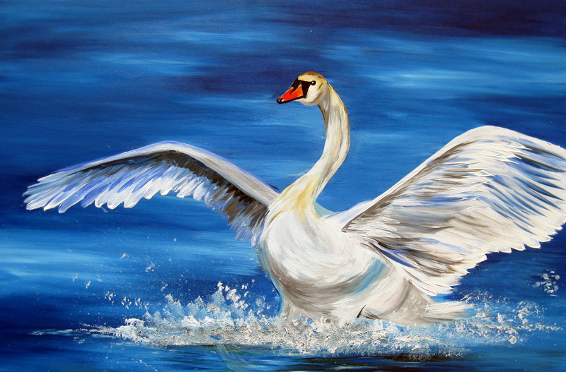 (CreativeWork) Swan Landing by Cathy Jacobs. arcylic-painting. Shop online at Bluethumb.