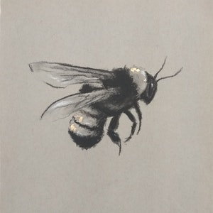 (CreativeWork) Bee no4 by Jaclyn McDougall. drawing. Shop online at Bluethumb.