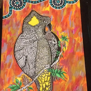 (CreativeWork) Yellow tail black cockatoo  by Tinika Clifford. drawing. Shop online at Bluethumb.