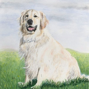 (CreativeWork) Barney by Michael Kent. watercolour. Shop online at Bluethumb.
