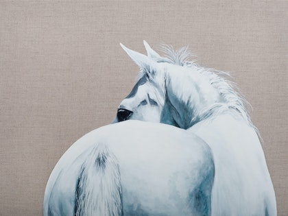 (CreativeWork) Sterling from Behind by Catherine Clark Dowden. oil-painting. Shop online at Bluethumb.