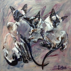 (CreativeWork) Siamese  Tangle by Lurlene Murray. arcylic-painting. Shop online at Bluethumb.