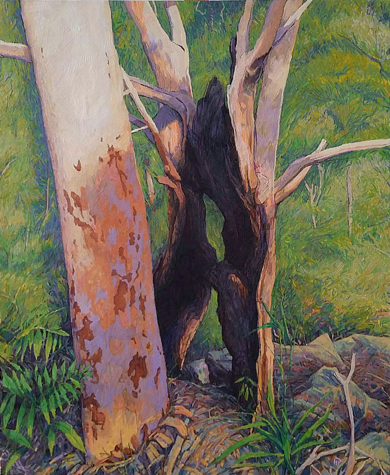 (CreativeWork) Angophora and Stump by Mac Monks. mixed-media. Shop online at Bluethumb.