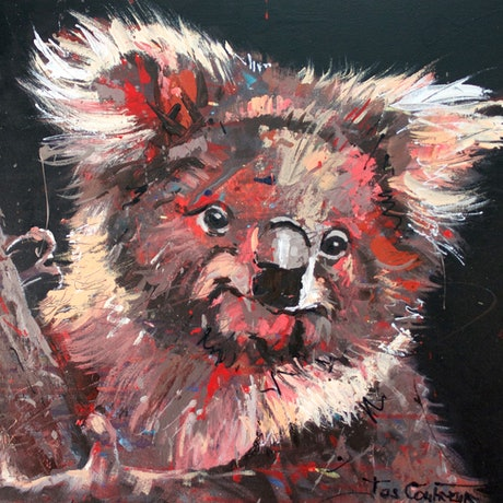 (CreativeWork) Koala 6 by Jos Coufreur. Acrylic Paint. Shop online at Bluethumb.
