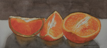 (CreativeWork) ORANGES-STUDY by JAN LAWNIKANIS. watercolour. Shop online at Bluethumb.