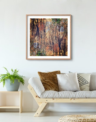 (CreativeWork) Regeneration Ed. 2 of 50 by Vanessa Bertagnole. Photograph. Shop online at Bluethumb.